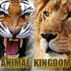 Životinjsko carstvo...