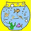Veliki akvarijum