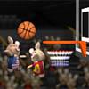 Zečja olimpijska košark...