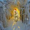 Luda božićna escape ava...