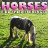 Igra razlika: Konji