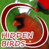 Skrivene ptice
