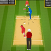 Kriket 2013