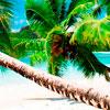 Rajska ostrva