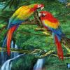 3D Fliper Džungla