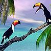 Dva papagaja